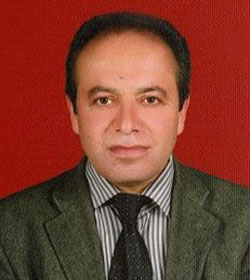 ali_irfan_badem_5