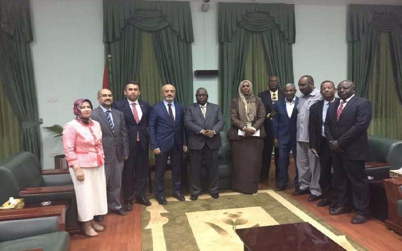 Sudan8
